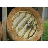 Мёд колодный выдержанный (дикий мёд в сотах)
